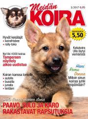 Meidän Koira
